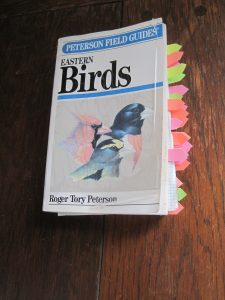 Patty annotated this bird book to mark all the birds we have seen or might see here.
